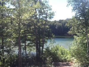 A view of the lake which is a short walk away. This is where we introduce all summer pups to swimming!